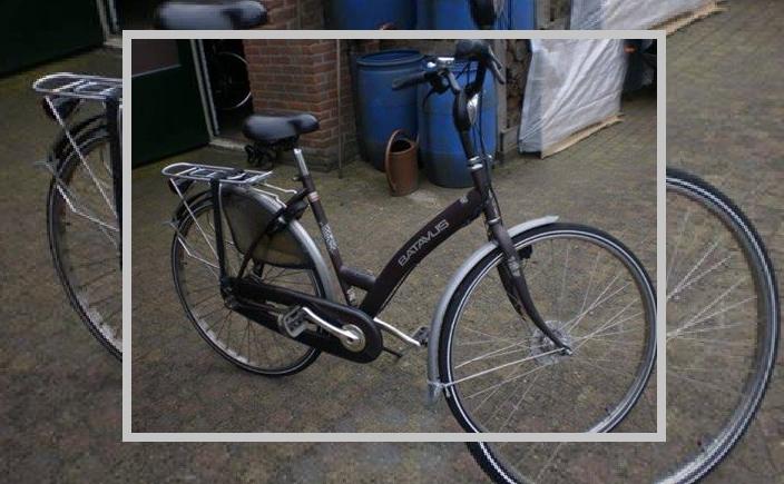 fiets riet